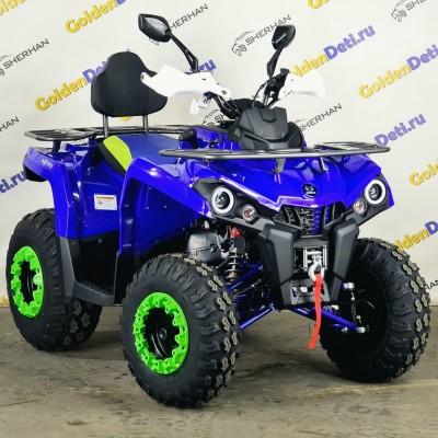 Квадроцикл Motax Grizlik 200 NEW 2021 года