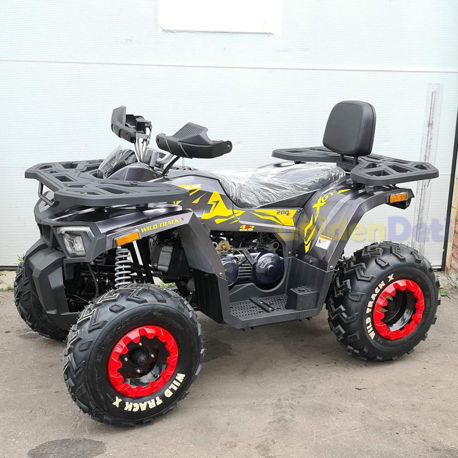 Квадроцикл MotoLand 200 WILD TRACK X 2020 года